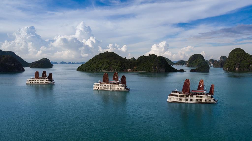 Du Thuyền Pelican Cruises 4 Sao trên Vịnh Hạ Long